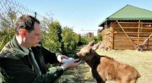 Rolnik uratował kilkudniową łoszkę (lasy.gov.pl)