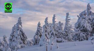 Kowarski Grzbiet w Karkonoszach w śniegu